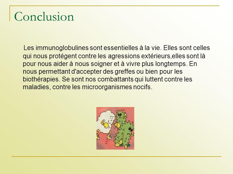 Conclusion Les immunoglobulines sont essentielles à la vie. Elles sont celles qui nous protégent contre les agressions extérieurs,elles sont là pour n