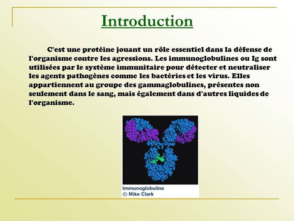 Introduction C'est une protéine jouant un rôle essentiel dans la défense de l'organisme contre les agressions. Les immunoglobulines ou Ig sont utilisé