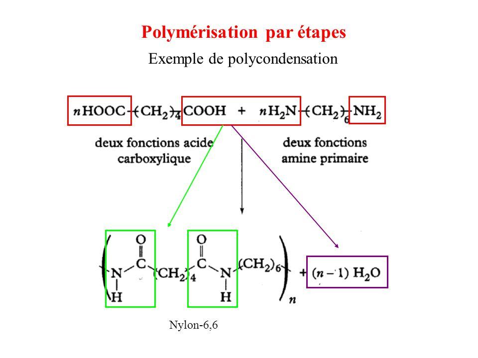 Nylon-6,6 Polymérisation par étapes