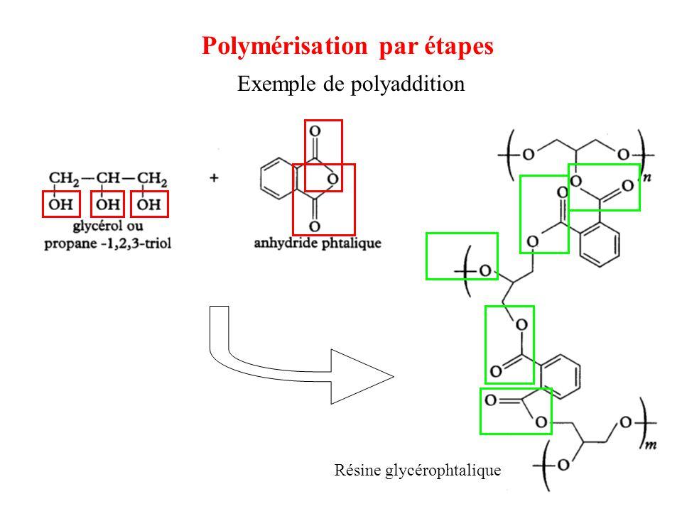 Exemple de polyaddition Résine glycérophtalique Polymérisation par étapes
