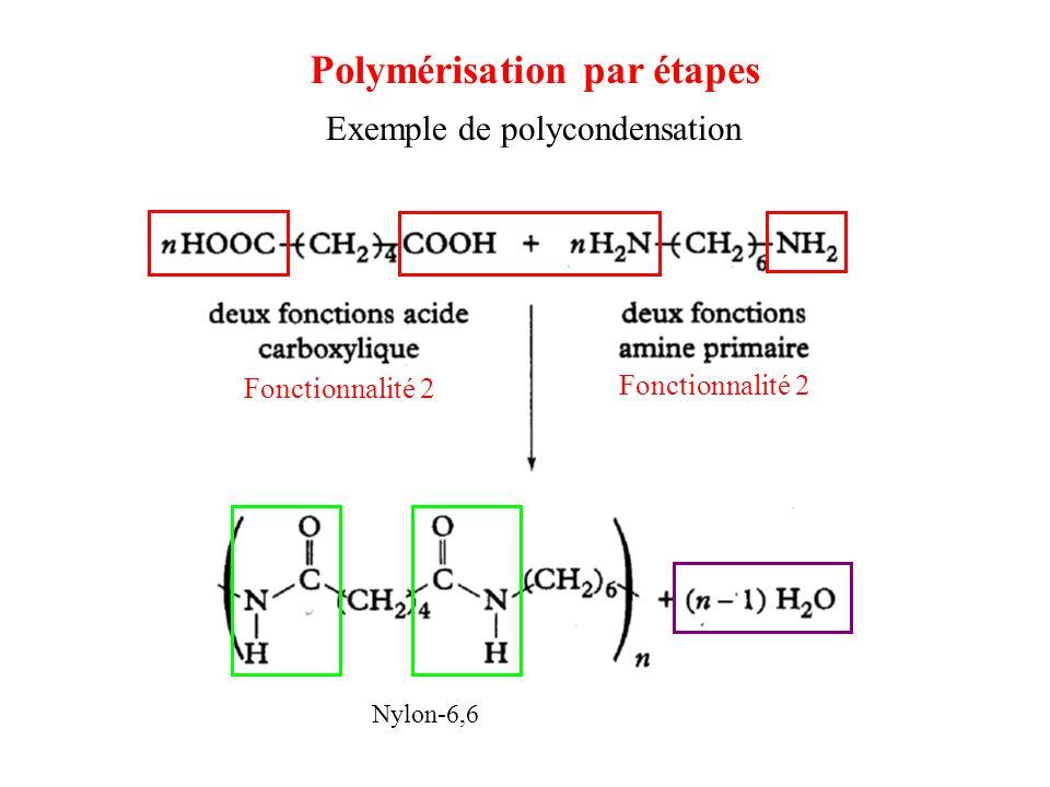 Exemple de polycondensation Nylon-6,6 Fonctionnalité 2 Polymérisation par étapes