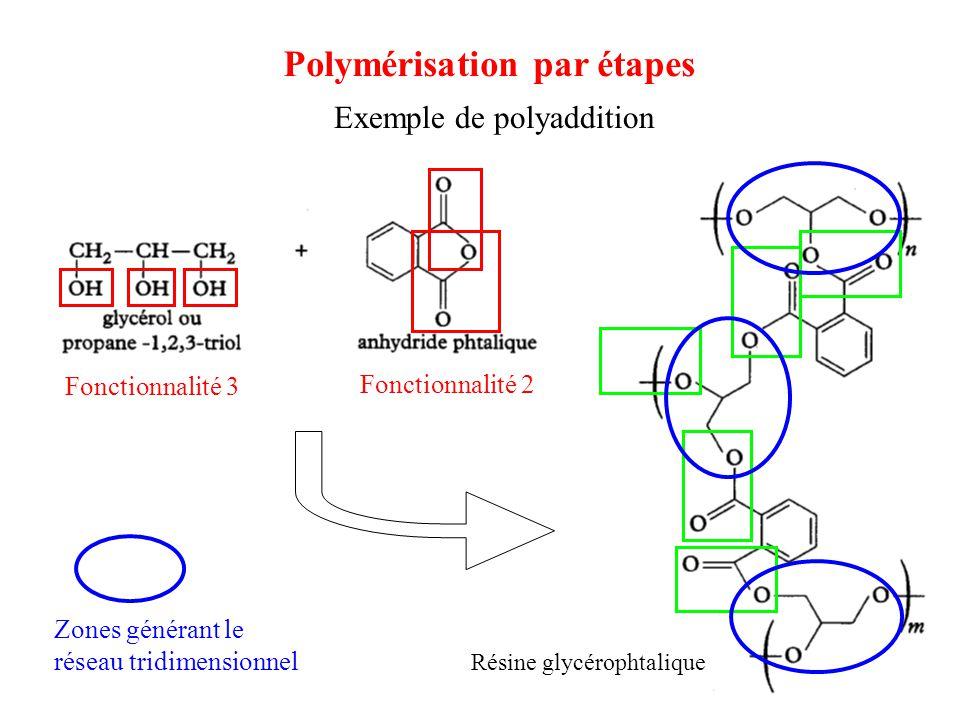 Exemple de polyaddition Résine glycérophtalique Fonctionnalité 3 Fonctionnalité 2 Zones générant le réseau tridimensionnel Polymérisation par étapes