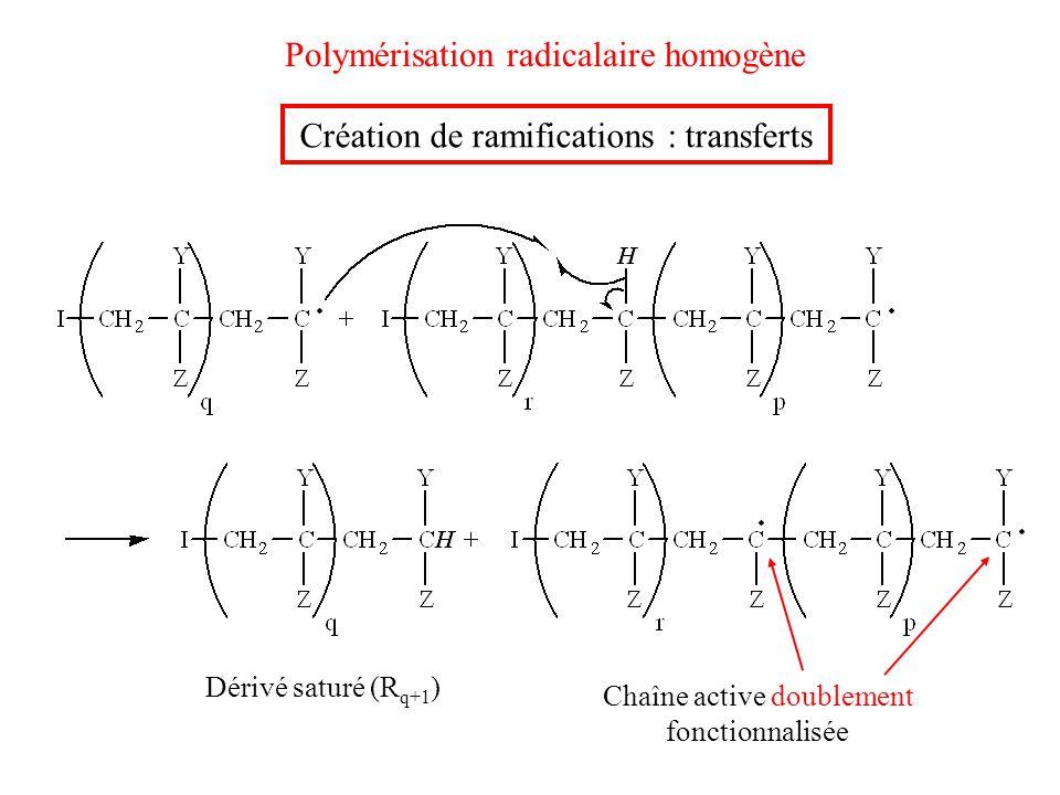 Polymérisation radicalaire homogène Dérivé saturé (R q+1 ) Chaîne active doublement fonctionnalisée Création de ramifications : transferts