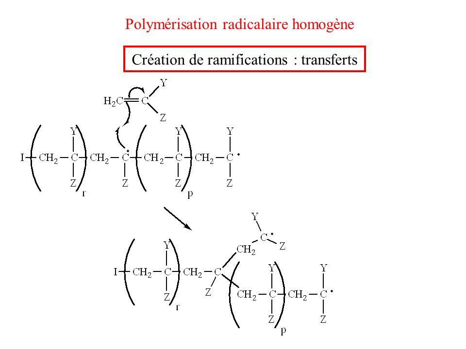 Polymérisation radicalaire homogène Création de ramifications : transferts