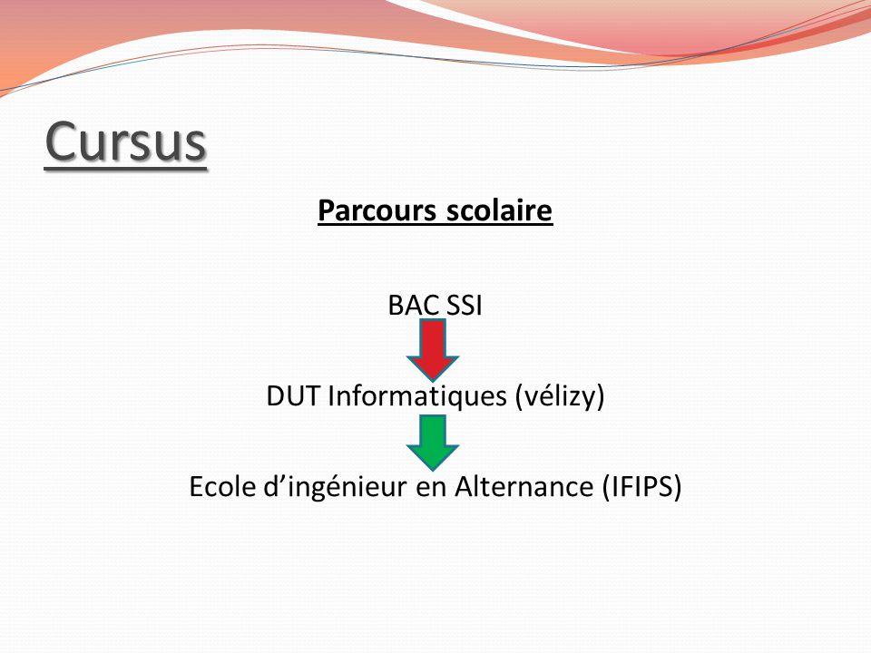 Cursus Parcours scolaire BAC SSI DUT Informatiques (vélizy) Ecole d'ingénieur en Alternance (IFIPS)