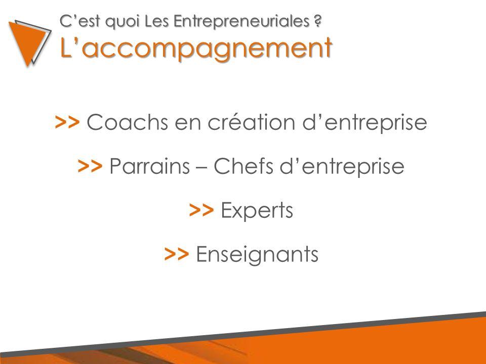 >> Coachs en création d'entreprise >> Parrains – Chefs d'entreprise >> Experts >> Enseignants C'est quoi Les Entrepreneuriales ? L'accompagnement