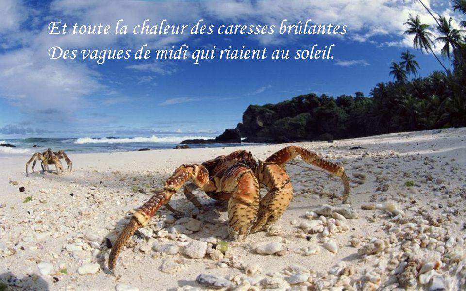 Le sable au teint livide perd son manteau doré, Mais la plage marquée par d assauts répétés A conservé l odeur de ces cristaux de sel