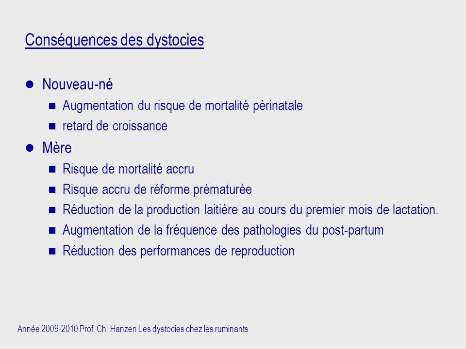 Année 2009-2010 Prof. Ch. Hanzen Les dystocies chez les ruminants Conséquences des dystocies Nouveau-né n Augmentation du risque de mortalité périnata