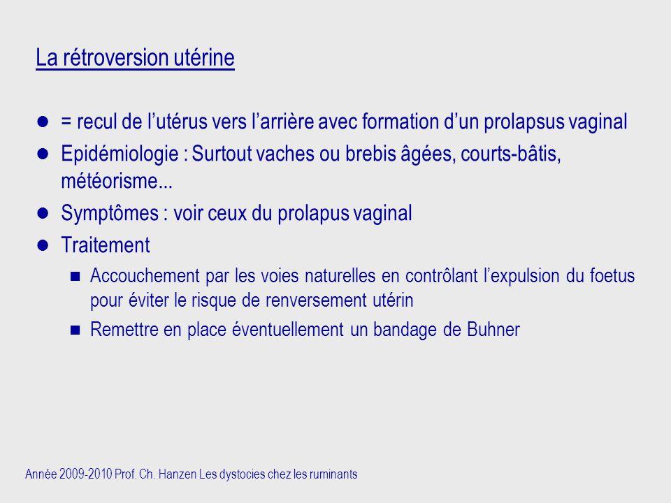 Année 2009-2010 Prof. Ch. Hanzen Les dystocies chez les ruminants La rétroversion utérine = recul de l'utérus vers l'arrière avec formation d'un prola