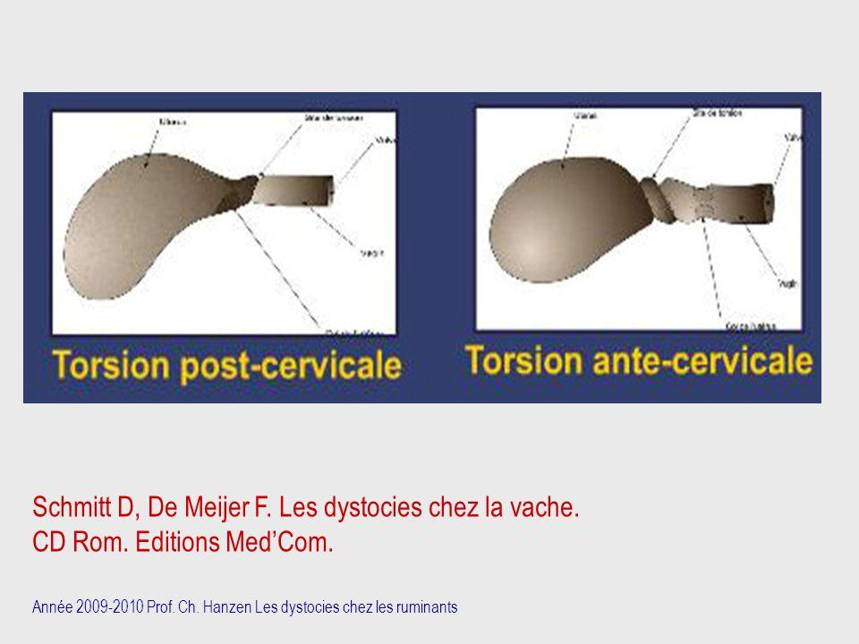 Année 2009-2010 Prof. Ch. Hanzen Les dystocies chez les ruminants Schmitt D, De Meijer F. Les dystocies chez la vache. CD Rom. Editions Med'Com.