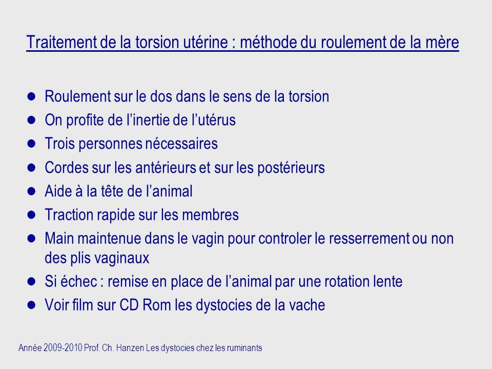 Année 2009-2010 Prof. Ch. Hanzen Les dystocies chez les ruminants Traitement de la torsion utérine : méthode du roulement de la mère Roulement sur le