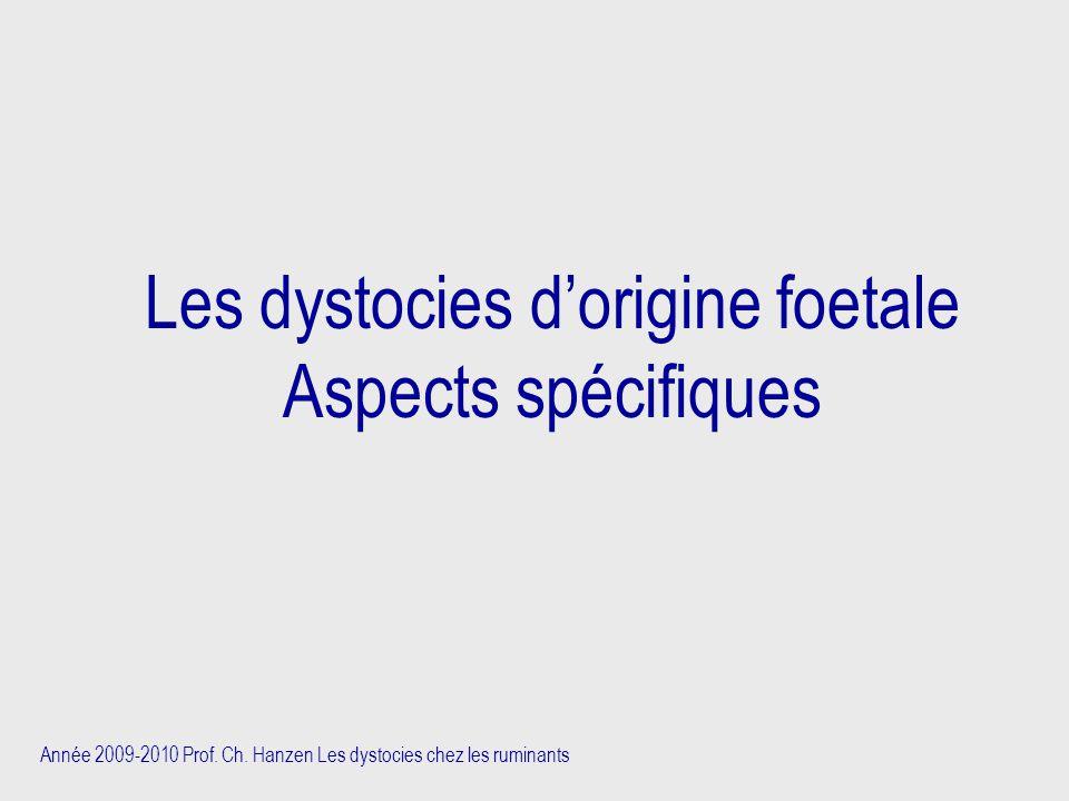Année 2009-2010 Prof. Ch. Hanzen Les dystocies chez les ruminants Les dystocies d'origine foetale Aspects spécifiques