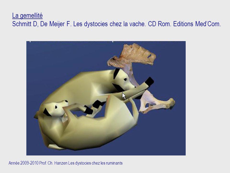 Année 2009-2010 Prof. Ch. Hanzen Les dystocies chez les ruminants La gemellité Schmitt D, De Meijer F. Les dystocies chez la vache. CD Rom. Editions M