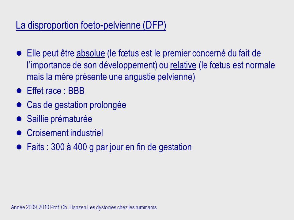 Année 2009-2010 Prof. Ch. Hanzen Les dystocies chez les ruminants La disproportion foeto-pelvienne (DFP) Elle peut être absolue (le fœtus est le premi