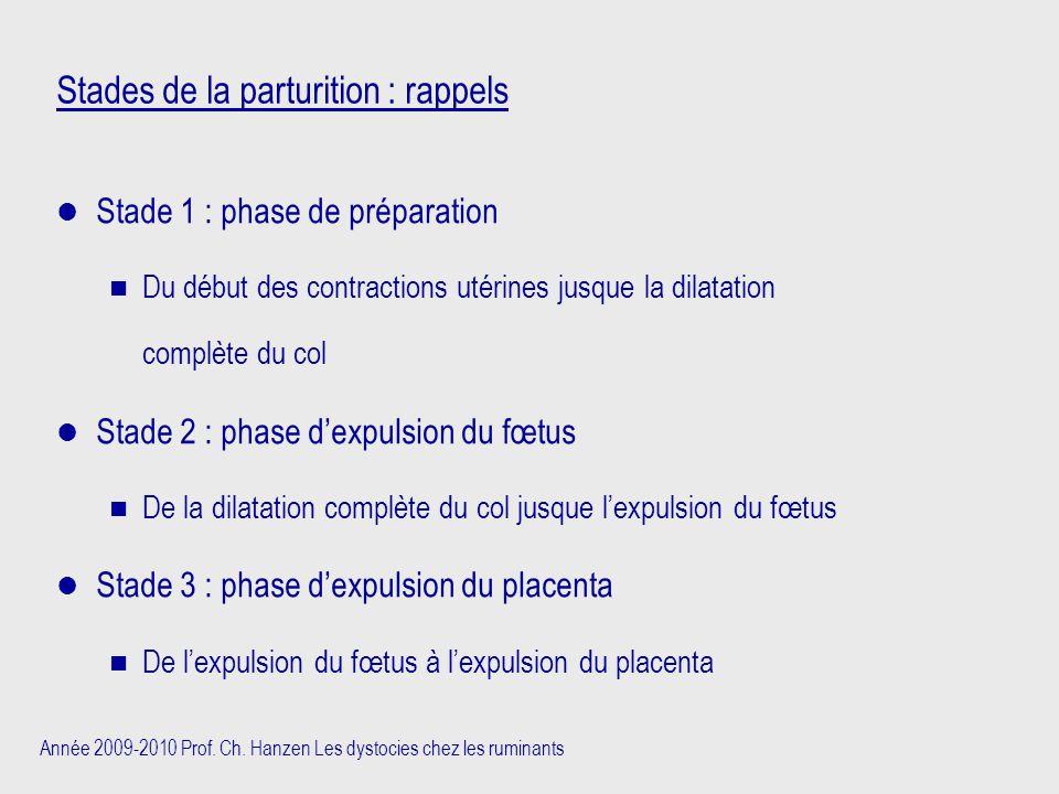 Année 2009-2010 Prof. Ch. Hanzen Les dystocies chez les ruminants Stades de la parturition : rappels Stade 1 : phase de préparation n Du début des con