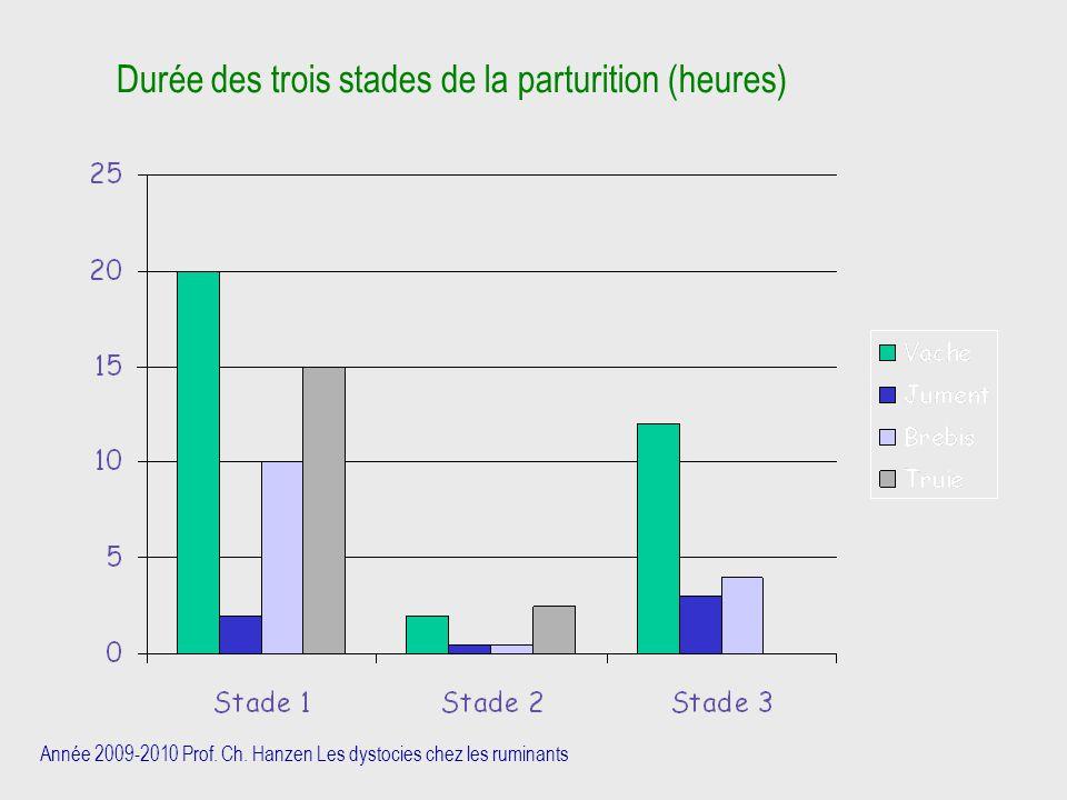 Année 2009-2010 Prof. Ch. Hanzen Les dystocies chez les ruminants Durée des trois stades de la parturition (heures)