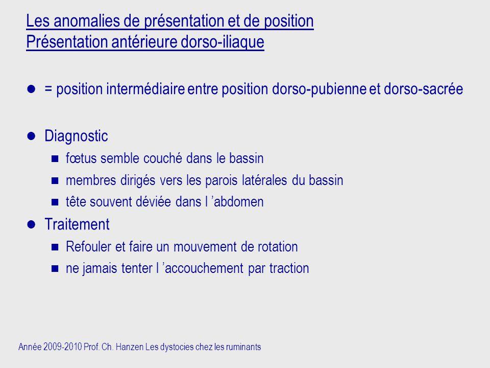 Année 2009-2010 Prof. Ch. Hanzen Les dystocies chez les ruminants Les anomalies de présentation et de position Présentation antérieure dorso-iliaque =