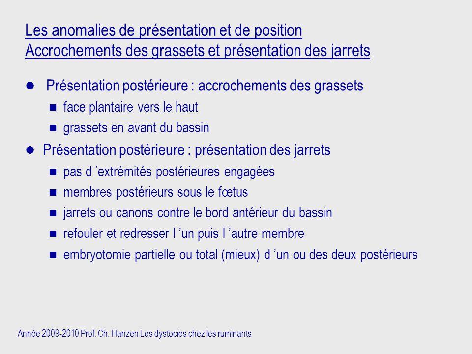Année 2009-2010 Prof. Ch. Hanzen Les dystocies chez les ruminants Les anomalies de présentation et de position Accrochements des grassets et présentat
