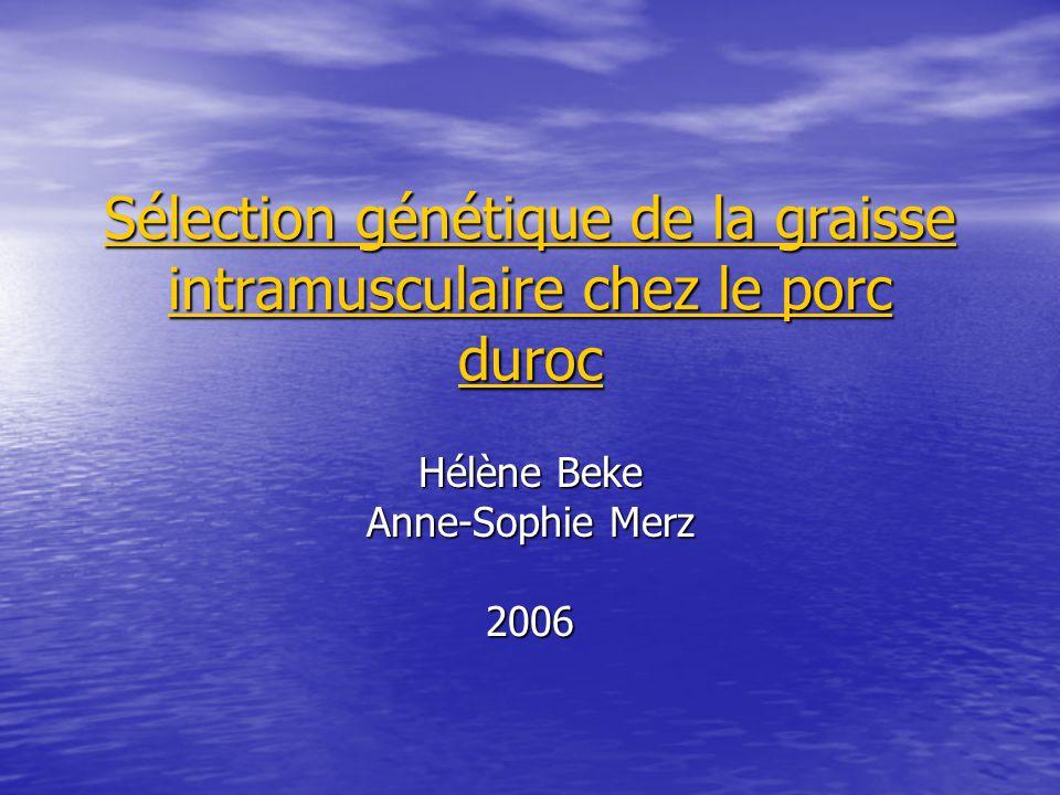 Sélection génétique de la graisse intramusculaire chez le porc duroc Hélène Beke Anne-Sophie Merz 2006