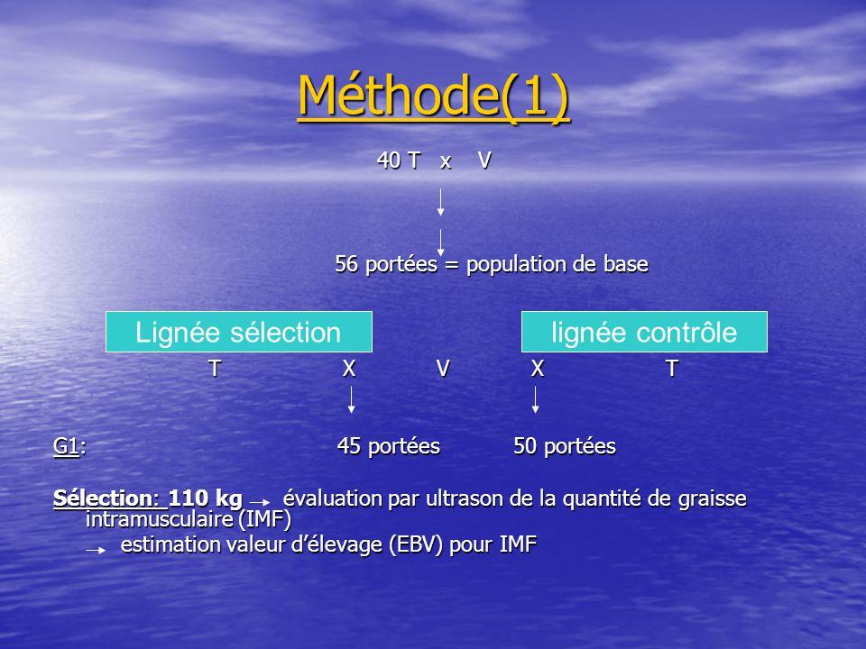 Méthode(1) 40 T x V 56 portées = population de base 56 portées = population de base T X V X T T X V X T G1: 45 portées 50 portées Sélection: 110 kg év