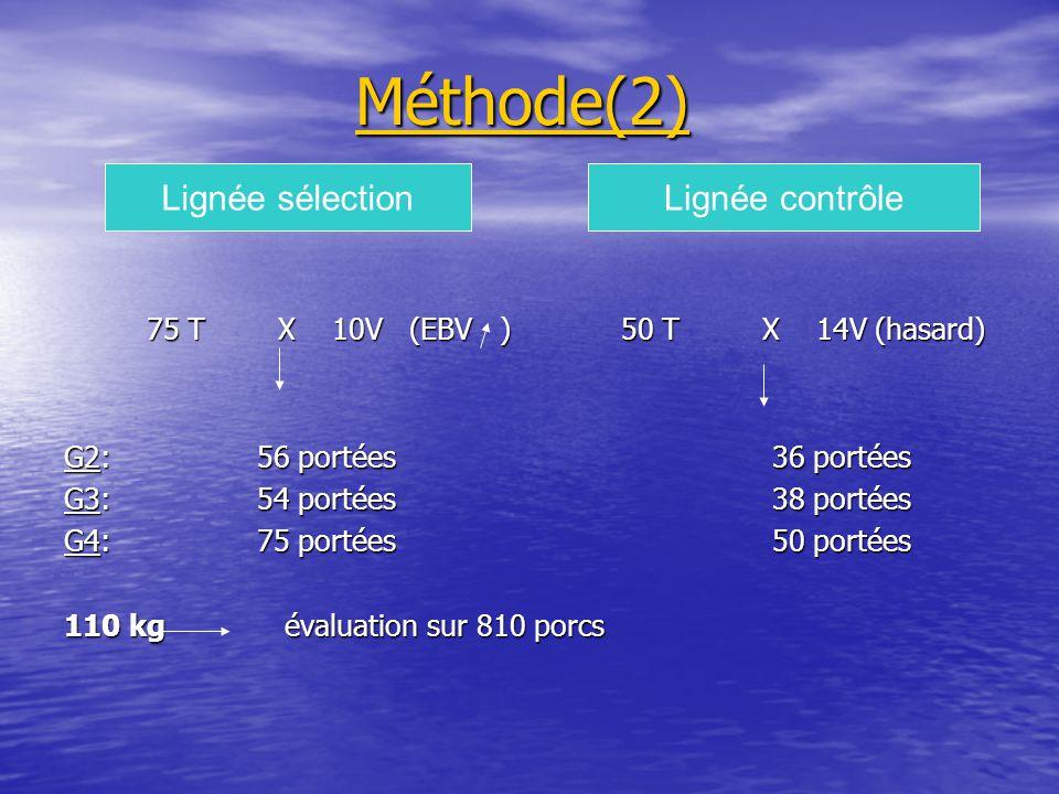 Méthode(2) 75 T X 10V (EBV ) 50 T X 14V (hasard) 75 T X 10V (EBV ) 50 T X 14V (hasard) G2: 56 portées 36 portées G3: 54 portées 38 portées G4: 75 portées 50 portées 110 kg évaluation sur 810 porcs Lignée sélectionLignée contrôle