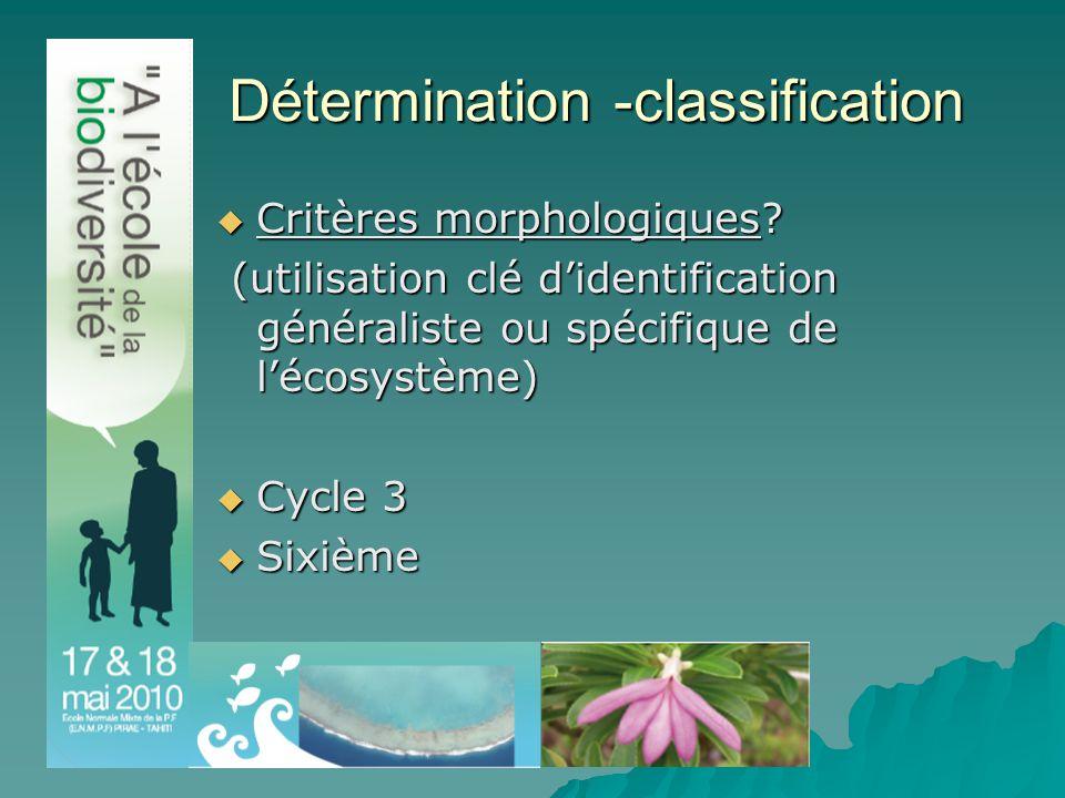 Détermination -classification  Critères morphologiques.