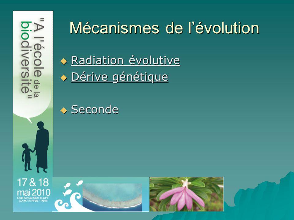 Mécanismes de l'évolution  Radiation évolutive  Dérive génétique  Seconde