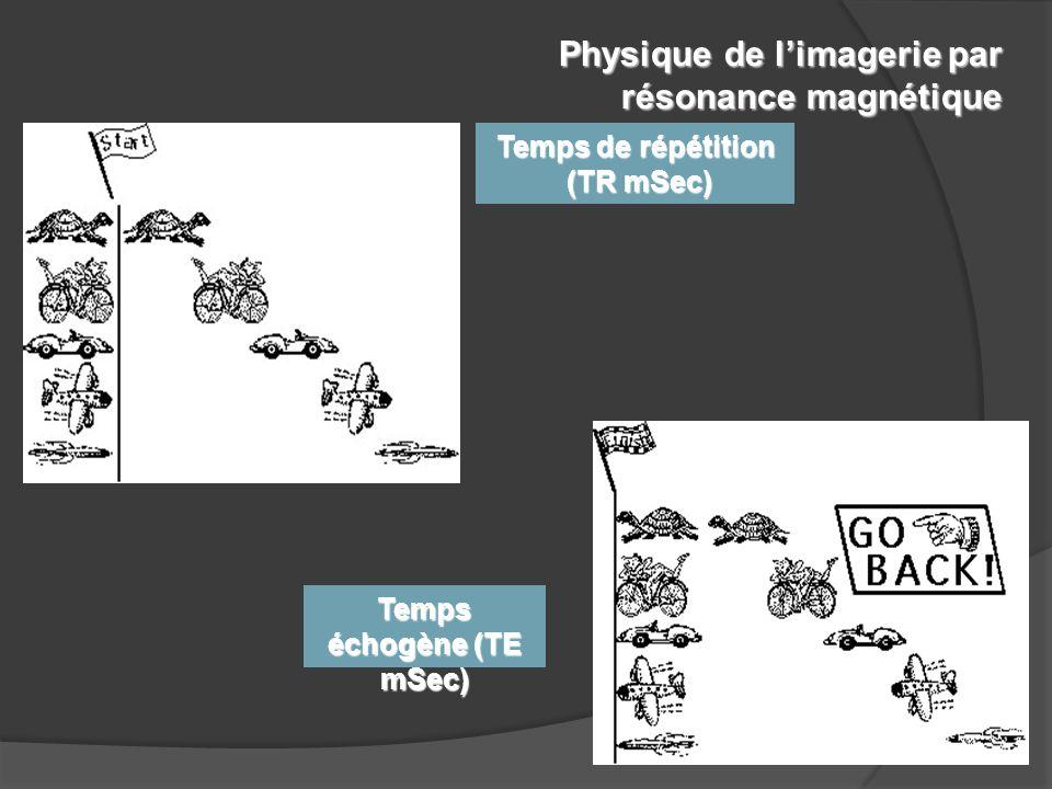 18 protocoles utilisés pour le diagnostic musculosquelettique Séquences couramment utilisées: T1 & T2 équilibrées (weighted) Densité protonique +/- gadolinium Physique de l'imagerie par résonance magnétique