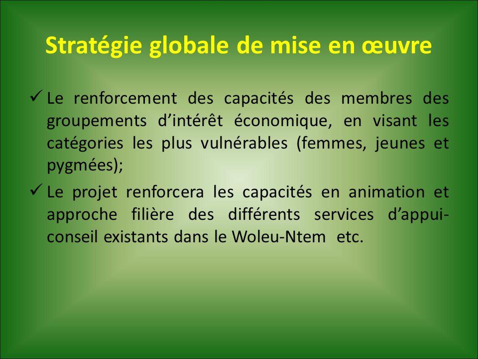 Stratégie globale de mise en œuvre Le renforcement des capacités des membres des groupements d'intérêt économique, en visant les catégories les plus v
