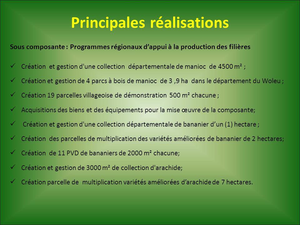 Principales réalisations Sous composante : Programmes régionaux d'appui à la production des filières Création et gestion d'une collection départementa