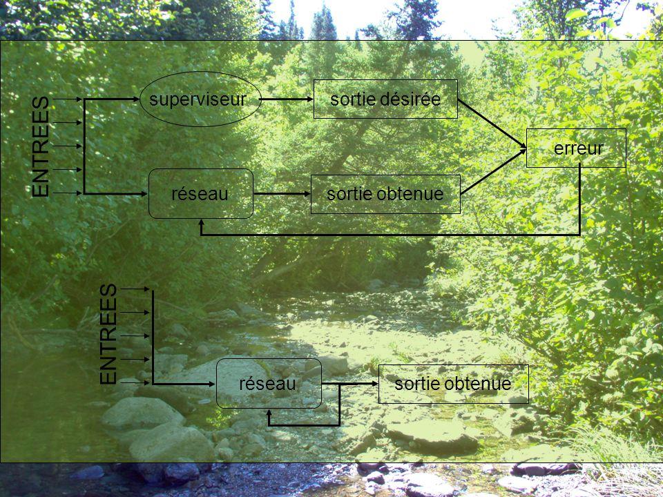 Permutation des sous-ensembles de données Meilleurs résultats : Grand nombre d'échantillons affectés aux phases d'apprentissage et de validation Fichier ANSE1-1 –Apprentissage sur 731 échantillons (366 de l'année 1996 humide et 365 de l'année 1997 sèche) –Validation sur 365 échantillons de l'année 2002 sèche –Test sur 366 échantillons de l'année 2004 humide  Efficience assez bonne Fichier ANSE2-1 –Validation sur 731 échantillons (366 de l'année 1996 humide et 365 de l'année 1997 sèche)  Efficience meilleure que ANSE1-1 Fichier ANSE3-1 –Apprentissage sur une année humide seulement –Validation sur une année sèche uniquement  Efficience moins bonne, surtout pour la phase de test