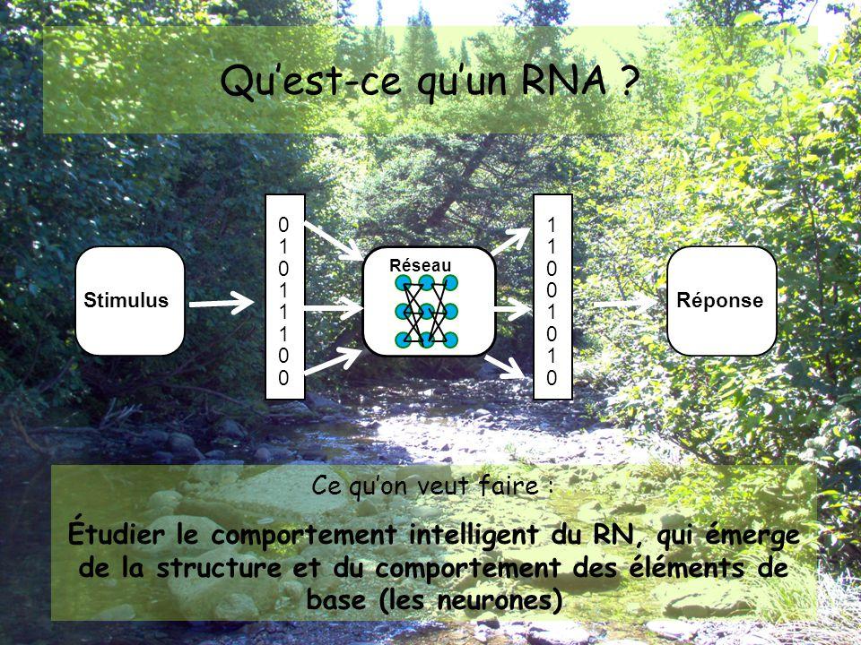 Architecture d'un RNA Coulibaly et al., 1999