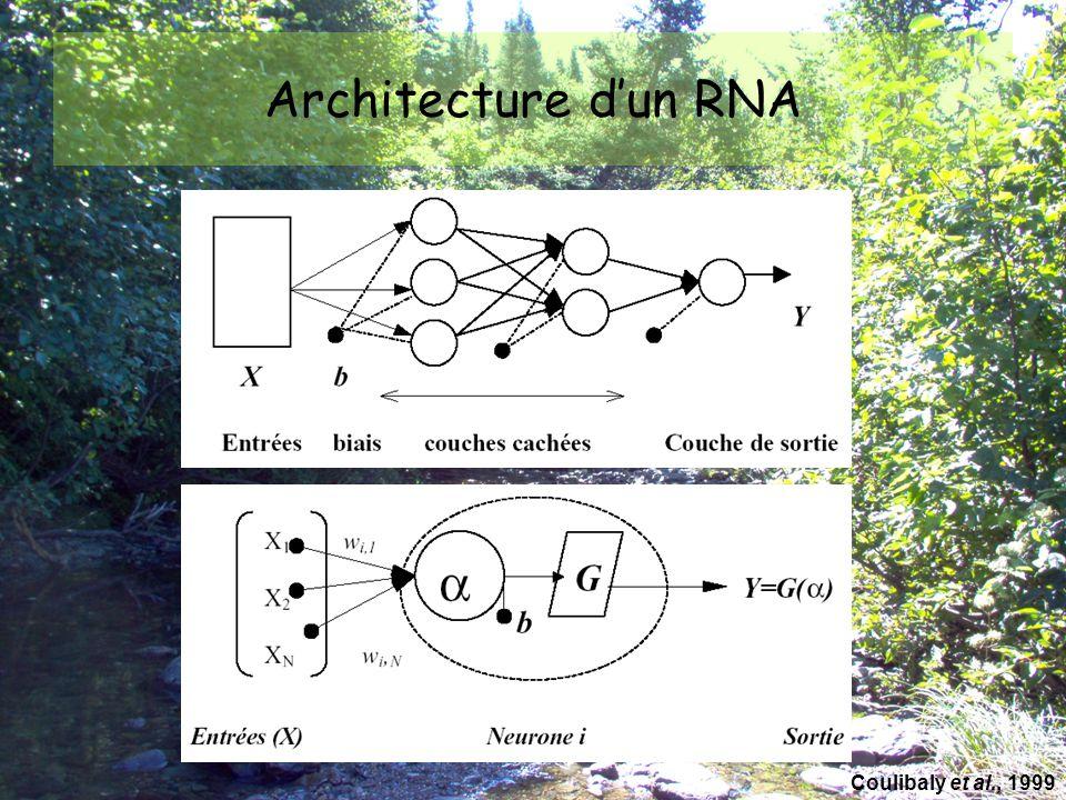 Les RNA sont… Nouvel outil d'approximation des systèmes complexes Efficaces lorsque les systèmes sont non linéaires
