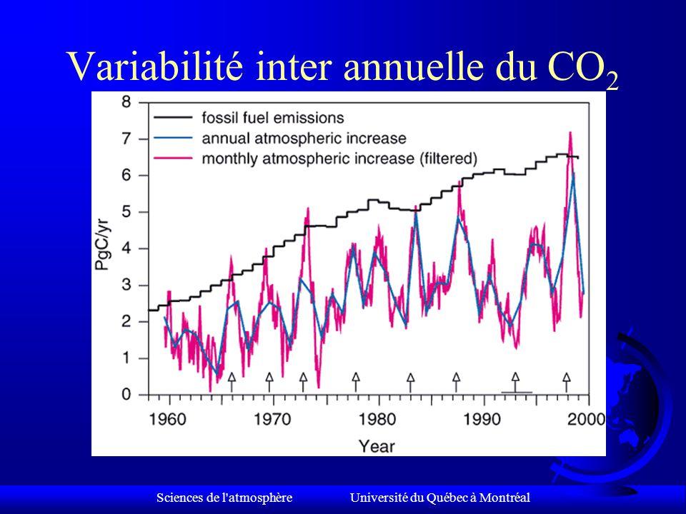 Pourquoi le CO 2 atmosphérique est-il si variable.
