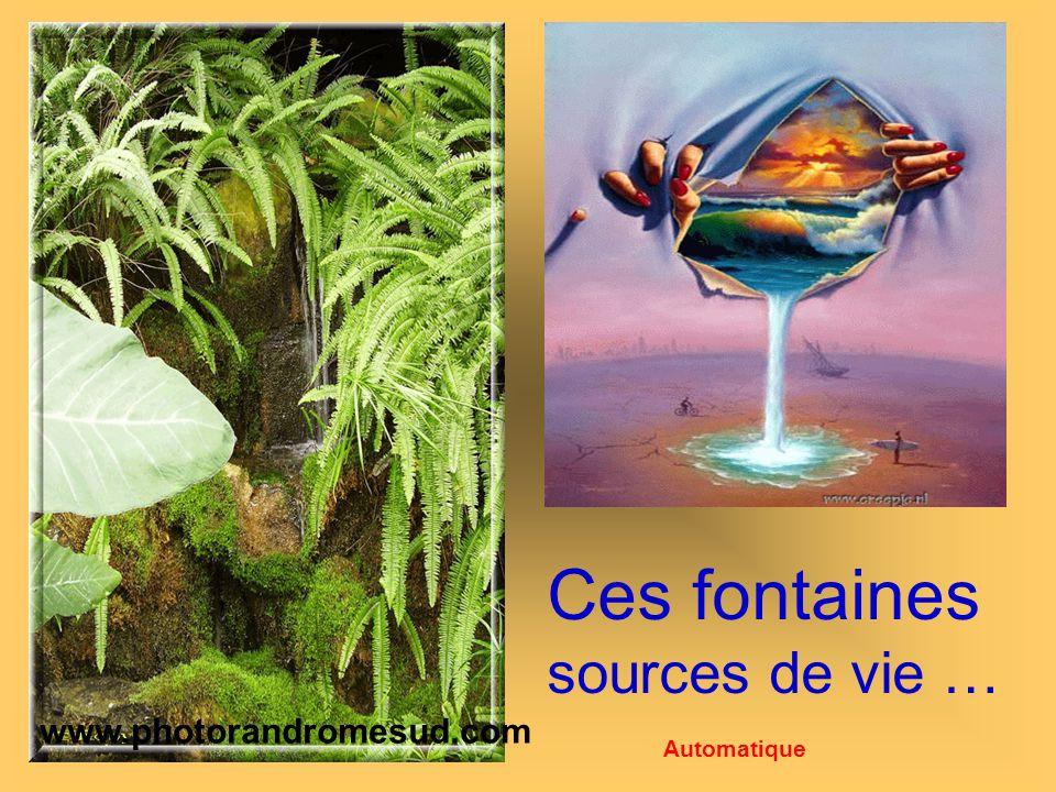Ces fontaines sources de vie … www.photorandromesud.com Automatique
