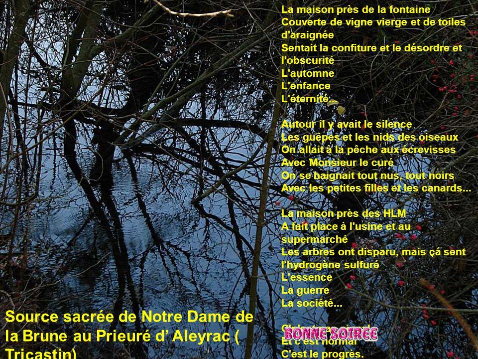 La fontaine de Font-Estréche ( Montagne de Serre gros secteur Le Poet Laval )