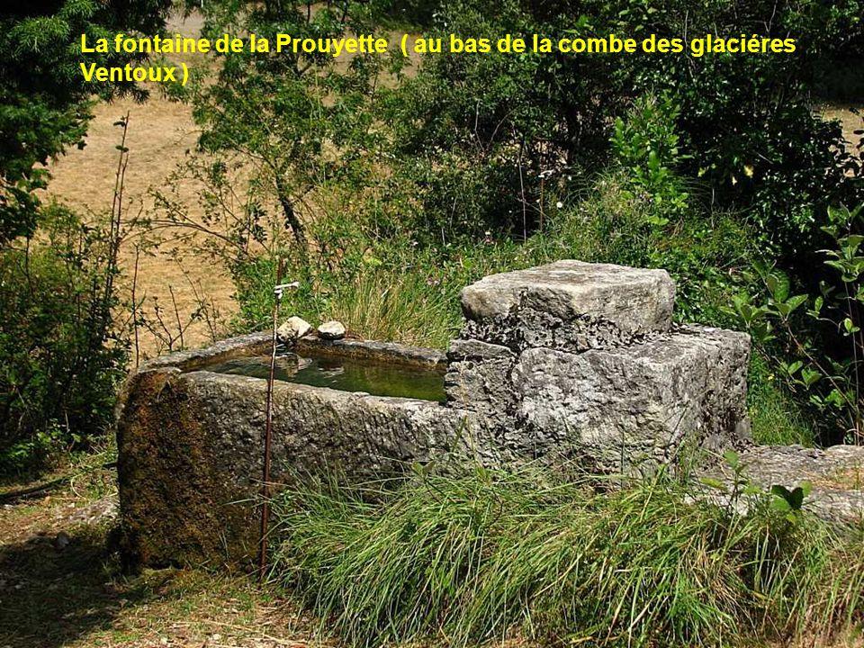 Vers St Léger du Ventoux