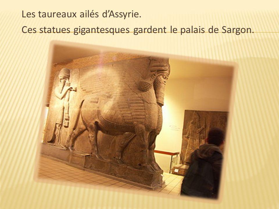 Les taureaux ailés d'Assyrie. Ces statues gigantesques gardent le palais de Sargon.