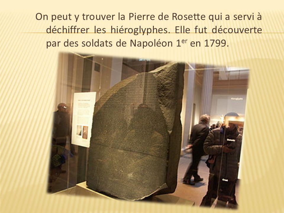 On peut y trouver la Pierre de Rosette qui a servi à déchiffrer les hiéroglyphes. Elle fut découverte par des soldats de Napoléon 1 er en 1799.
