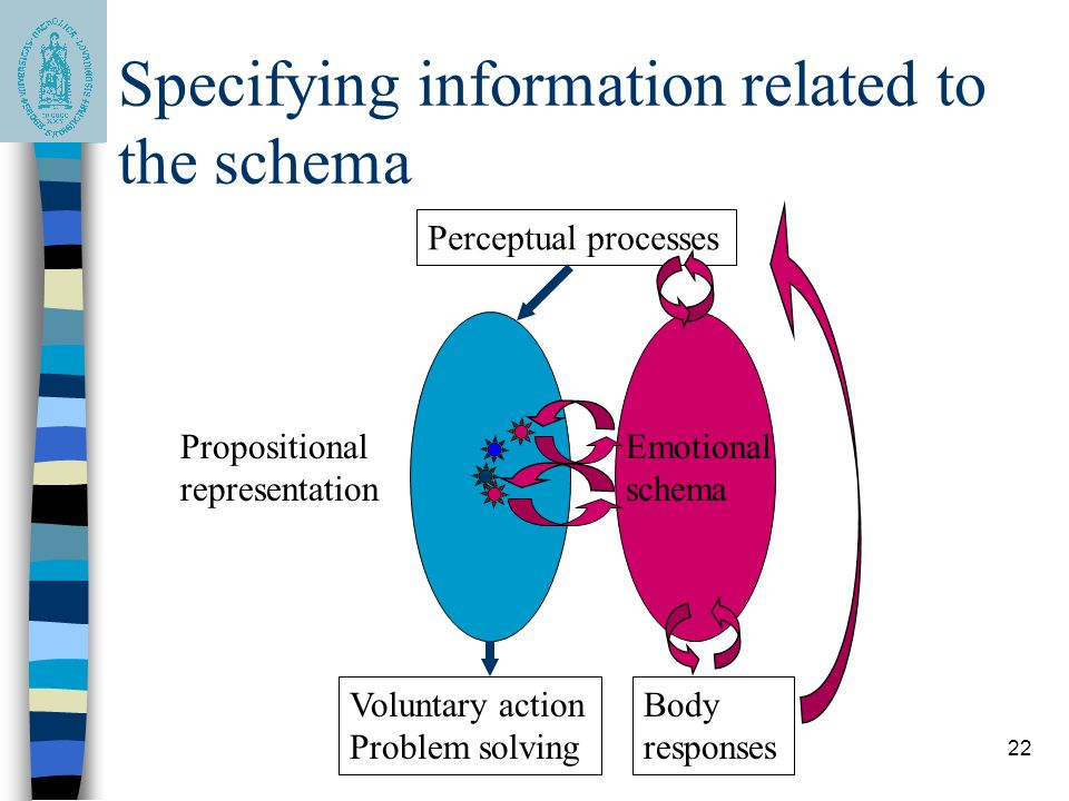 22 Specifying information related to the schema Perceptual processes Propositional representation Emotional schema Body responses Voluntary action Pro