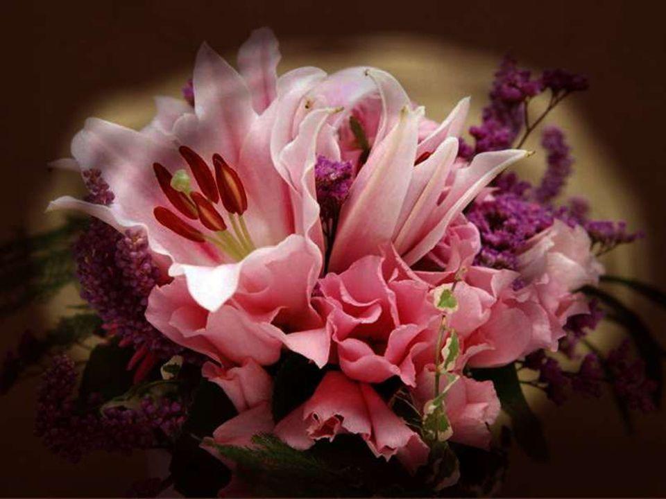 Sans la tendresse, l'amour ne serait rien. Marie Laforêt