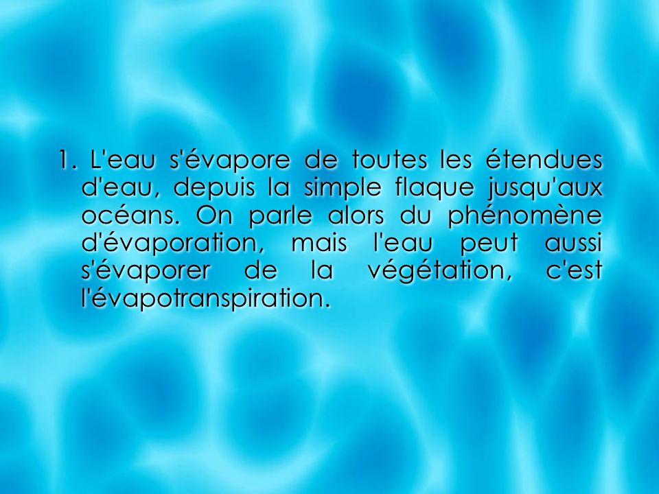 1. L'eau s'évapore de toutes les étendues d'eau, depuis la simple flaque jusqu'aux océans. On parle alors du phénomène d'évaporation, mais l'eau peut