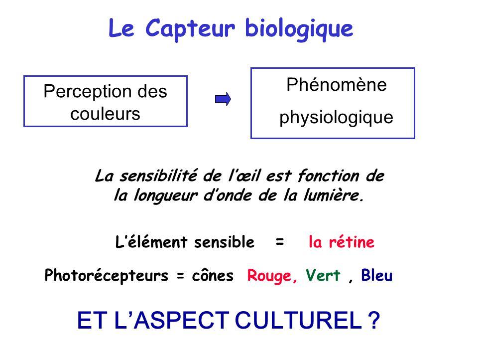 Phénomène physiologique La sensibilité de l'œil est fonction de la longueur d'onde de la lumière. L'élément sensible = la rétine Photorécepteurs = côn