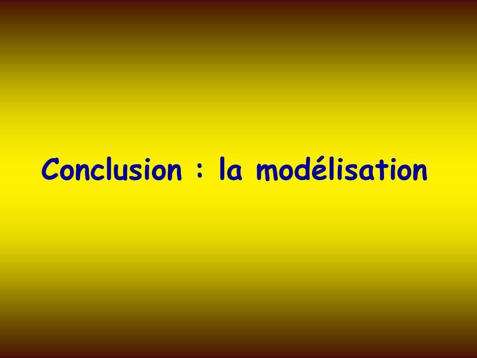 Conclusion : la modélisation