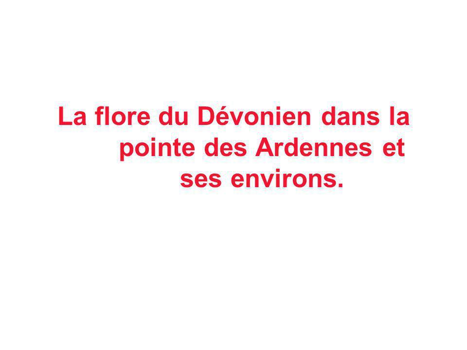 La flore du Dévonien dans la pointe des Ardennes et ses environs.