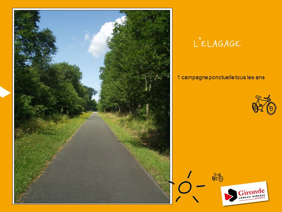 L'ELAGAGE 1 campagne ponctuelle tous les ans VOIR AVEC PIERRE POUR PHOTO