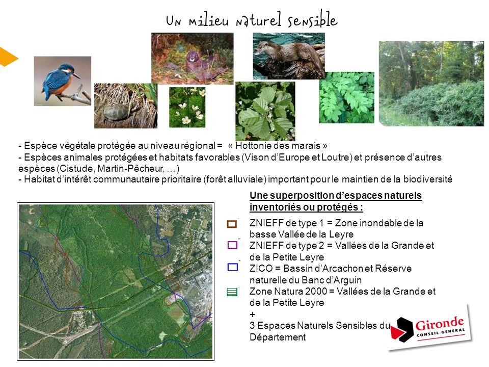 Un milieu naturel sensible RD 802 à Audenge ZNIEFF de type 1 = Zone inondable de la basse Vallée de la Leyre ZNIEFF de type 2 = Vallées de la Grande e