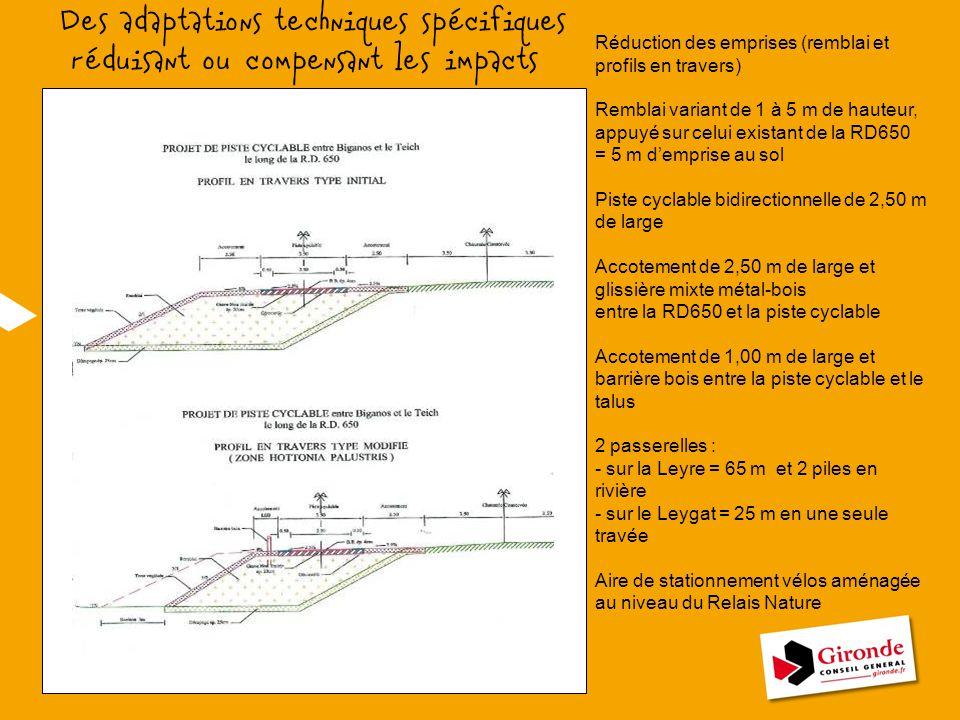 Réduction des emprises (remblai et profils en travers) Remblai variant de 1 à 5 m de hauteur, appuyé sur celui existant de la RD650 = 5 m d'emprise au