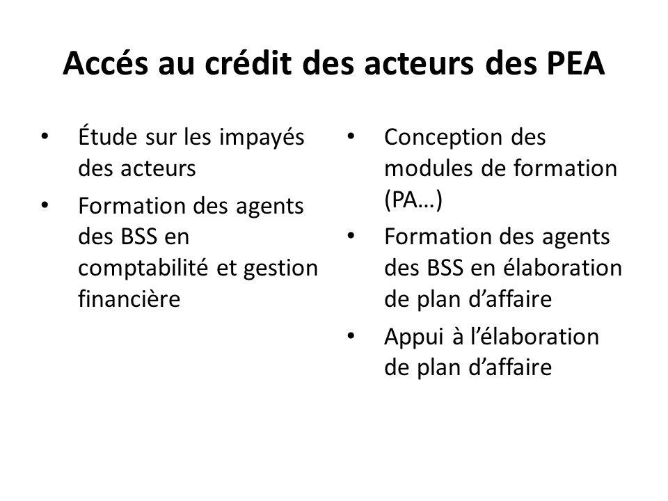 Accés au crédit des acteurs des PEA Étude sur les impayés des acteurs Formation des agents des BSS en comptabilité et gestion financière Conception des modules de formation (PA…) Formation des agents des BSS en élaboration de plan d'affaire Appui à l'élaboration de plan d'affaire