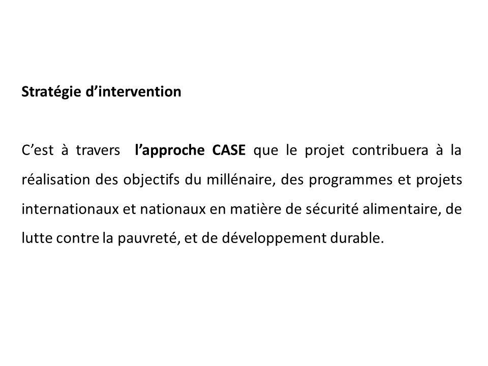 Stratégie d'intervention C'est à travers l'approche CASE que le projet contribuera à la réalisation des objectifs du millénaire, des programmes et projets internationaux et nationaux en matière de sécurité alimentaire, de lutte contre la pauvreté, et de développement durable.